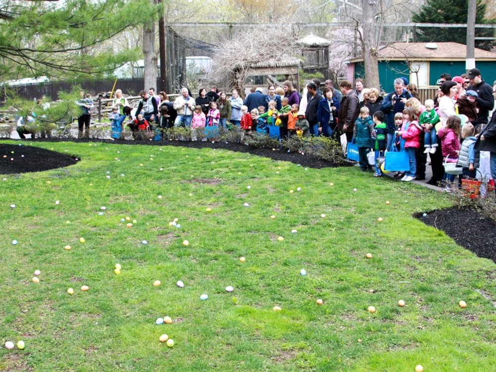 Elmwood-Park-Zoo-Easter-Egg-Hunt.