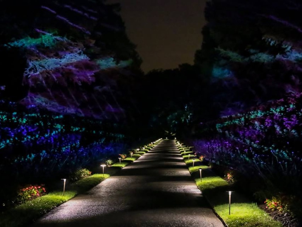 Longwood Gardens Nightscape