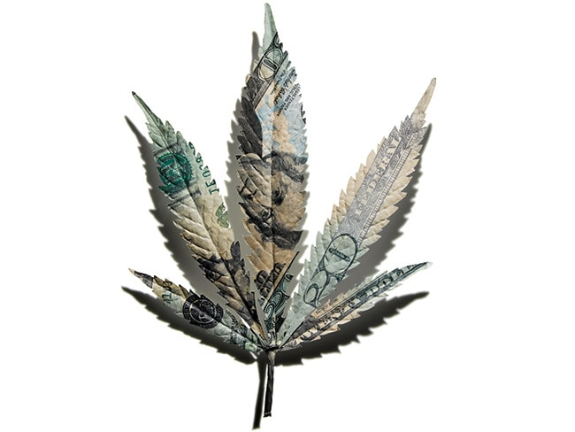 3 - The Business of Marijuana
